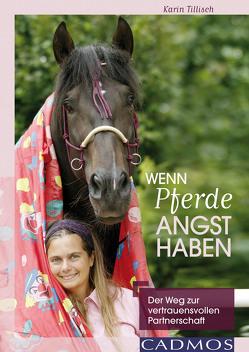 Wenn Pferde Angst haben von Tillisch,  Karin