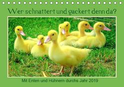 Wer gackert und schnattert denn da? Mit Enten und Hühnern durchs Jahr (Tischkalender 2019 DIN A5 quer) von Löwer,  Sabine