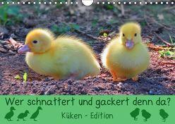 Wer schnattert und gackert denn da? – Küken-Edition (Wandkalender 2019 DIN A4 quer) von Löwer,  Sabine