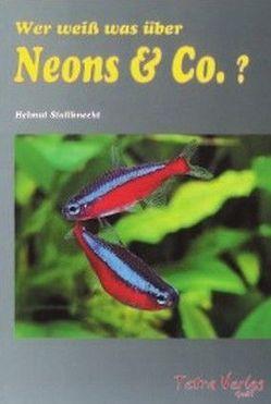 Wer weiss was über Neons & Co. von Stallknecht,  Helmut