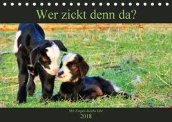 Wer zickt denn da? Mit Ziegen durchs Jahr (Tischkalender 2018 DIN A5 quer) von Löwer,  Sabine
