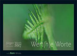 Wert(h)e Worte 2017 von Werth,  Jürgen