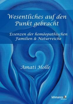 Wesentliches auf den Punkt gebracht von Holle,  Amati