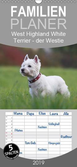 West Highland White Terrier – Selbstbewustes Powerpaket – der Westie – Familienplaner hoch (Wandkalender 2019 , 21 cm x 45 cm, hoch) von Mielewczyk,  Barbara