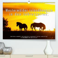 Westerwälder Islandhengste in den Jahreszeiten. (Premium, hochwertiger DIN A2 Wandkalender 2020, Kunstdruck in Hochglanz) von Gerlach,  Ingo