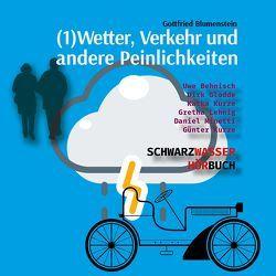 Wetter, Verkehr und andere Peinlichkeiten von Blumenstein,  Gottfried