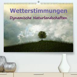 Wetterstimmungen. Dynamische Naturlandschaften (Premium, hochwertiger DIN A2 Wandkalender 2020, Kunstdruck in Hochglanz) von Brunner-Klaus,  Liselotte
