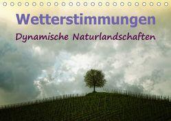 Wetterstimmungen. Dynamische Naturlandschaften (Tischkalender 2019 DIN A5 quer) von Brunner-Klaus,  Liselotte