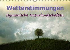 Wetterstimmungen. Dynamische Naturlandschaften (Wandkalender 2019 DIN A3 quer) von Brunner-Klaus,  Liselotte