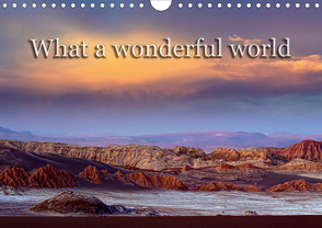 What a wonderful world (Wandkalender 2020 DIN A4 quer) von Voss,  Michael
