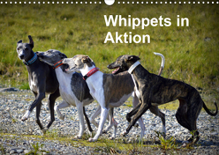 Whippets in AktionAT-Version (Wandkalender 2020 DIN A3 quer) von Redl,  Ula