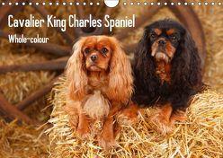 Whole-colour Cavalier King Charles Spaniel (Wandkalender 2018 DIN A4 quer) von Wegner,  Petra