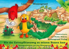 Wie der Entenpfützenweg zu seinem Namen kam von vom Wiesengrund,  Lana, Wilhelm,  Wiebke