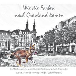 Wie die Farben nach Grauland kamen von Gattwinkel SAC,  Jörg A., Zacharias-Hellwig,  Judith