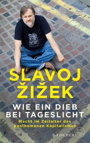 Wie ein Dieb bei Tageslicht von Genschow,  Karen, Žižek,  Slavoj