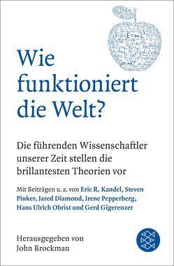 Wie funktioniert die Welt? von Brockman,  John, Vogel,  Sebastian