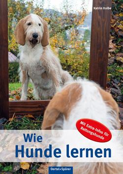 Wie Hunde lernen von Kolbe,  Katrin