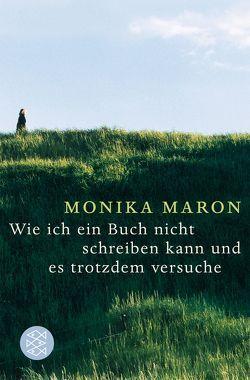 Wie ich ein Buch nicht schreiben kann und es trotzdem versuche von Maron,  Monika