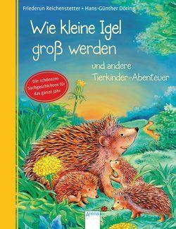 Wie kleine Igel groß werden und andere Tierkinder-Abenteuer von Döring,  Hans Günther, Reichenstetter,  Friederun