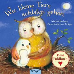 Wie kleine Tiere schlafen gehen von Rachner,  Marina, zur Brügge,  Anne-Kristin