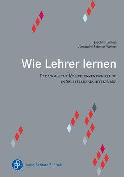 Wie Lehrer lernen von Ludwig,  Joachim, Schmidt-Wenzel,  Alexandra