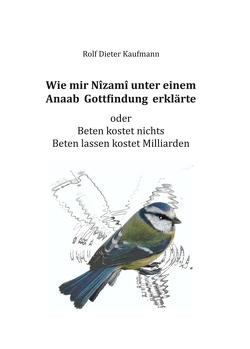 Wie mir Nîzamî unter einem Anaab Gottfindung erklärte von Kaufmann,  Rolf Dieter
