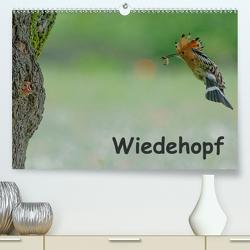Wiedehopf (Premium, hochwertiger DIN A2 Wandkalender 2021, Kunstdruck in Hochglanz) von Wolf,  Gerald
