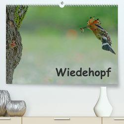 Wiedehopf (Premium, hochwertiger DIN A2 Wandkalender 2020, Kunstdruck in Hochglanz) von Wolf,  Gerald