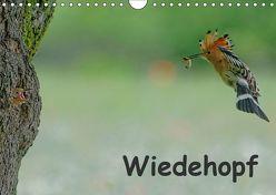 Wiedehopf (Wandkalender 2019 DIN A4 quer) von Wolf,  Gerald