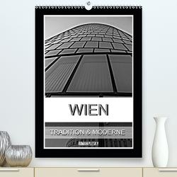 Wien, Tradition und Moderne (Premium, hochwertiger DIN A2 Wandkalender 2020, Kunstdruck in Hochglanz) von Plesky,  Roman