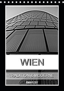 Wien, Tradition und Moderne (Tischkalender 2019 DIN A5 hoch)