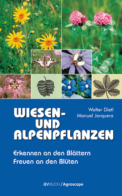 Wiesen- und Alpenpflanzen von Dietl,  Walter, Jorquera,  Manuel