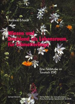 Wiesen und Brachland als Lebensraum für Schmetterlinge von Erhardt