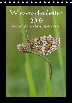Wiesenschönheiten (Tischkalender 2019 DIN A5 hoch) von Birzer,  Christian