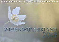 Wiesenwunderland 2019 (Tischkalender 2019 DIN A5 quer) von Wandel,  Juliane