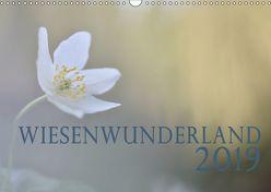 Wiesenwunderland 2019 (Wandkalender 2019 DIN A3 quer) von Wandel,  Juliane