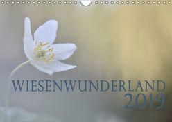 Wiesenwunderland 2019 (Wandkalender 2019 DIN A4 quer) von Wandel,  Juliane