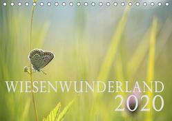 Wiesenwunderland 2020 (Tischkalender 2020 DIN A5 quer) von Wandel,  Juliane