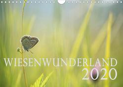 Wiesenwunderland 2020 (Wandkalender 2020 DIN A4 quer) von Wandel,  Juliane