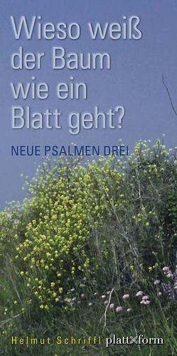 Wieso weiß der Baum wie ein Blatt geht? von Schriffl,  Helmut