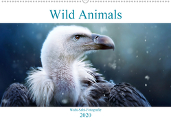 Wild Animals – Wilde Tiere (Wandkalender 2020 DIN A2 quer) von Bürger,  Janina