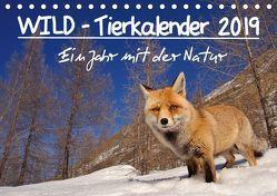 WILD – Tierkalender 2019 (Tischkalender 2019 DIN A5 quer) von Colombo,  Marco
