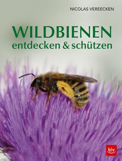 Wildbienen entdecken & schützen von Vereecken,  Nicolas