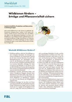 Wildbienen fördern – Erträge und Pflanzenvielfalt sichern von Mueller,  Andreas, Pfiffner,  Lukas