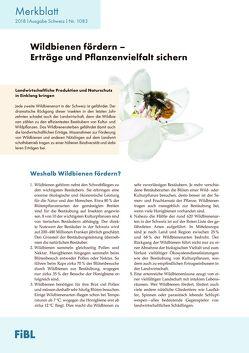 Wildbienen fördern – Erträge und Pflanzenvielfalt von Mueller,  Andreas, Pfiffner,  Lukas