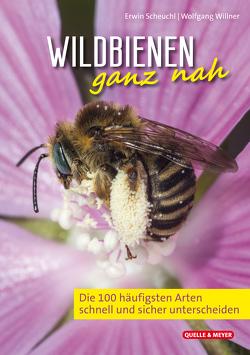 Wildbienen ganz nah von Scheuchl,  Erwin, Willner,  Wolfgang