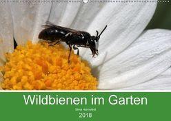 Wildbienen im Garten (Wandkalender 2018 DIN A2 quer) von Hahnefeld,  Silvia