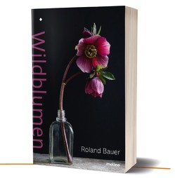 Wildblumen von Bauer,  Roland