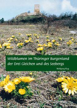 Wildblumen im Thüringer Burgenland