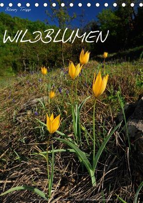 WILDBLUMEN (Tischkalender 2018 DIN A5 hoch) von Trapp,  Benny